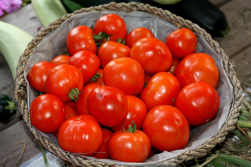 Урожай томата Белла Роса (корзина 40 см в диаметре)